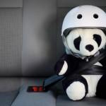 War der Panda da