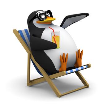 Pinguin Update von Google